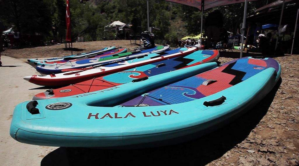 hal; stand up paddle boards