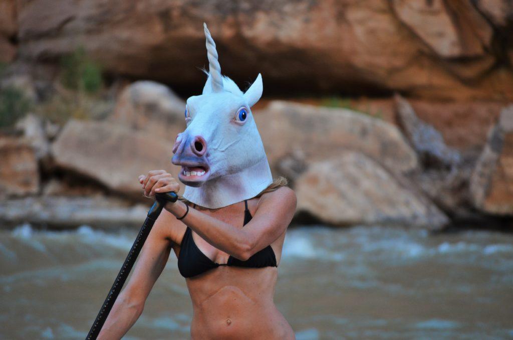 San Juan River stand up paddleboarding unicorn
