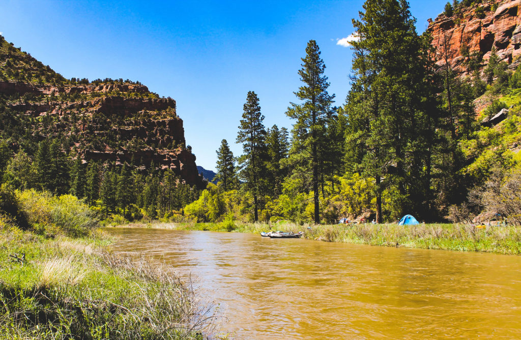 The Lower Dolores River: Taming the Wild
