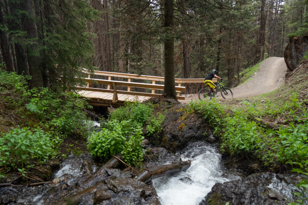 Telluride Bike Park: What You Need to Know About the New Trail System