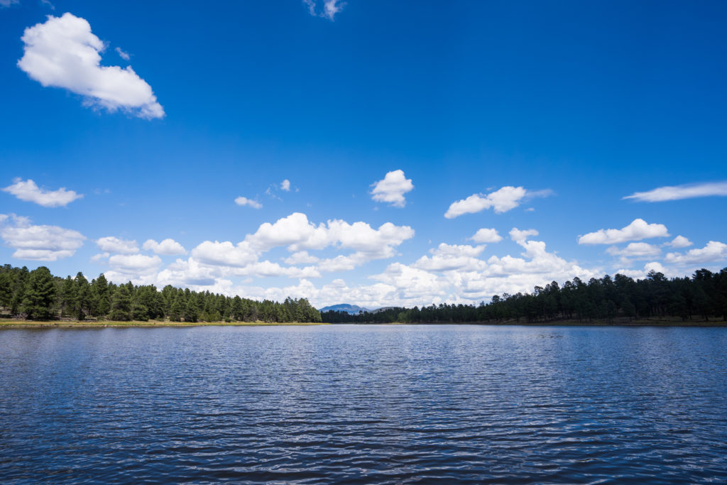 Kaibab Lake Williams, Arizona