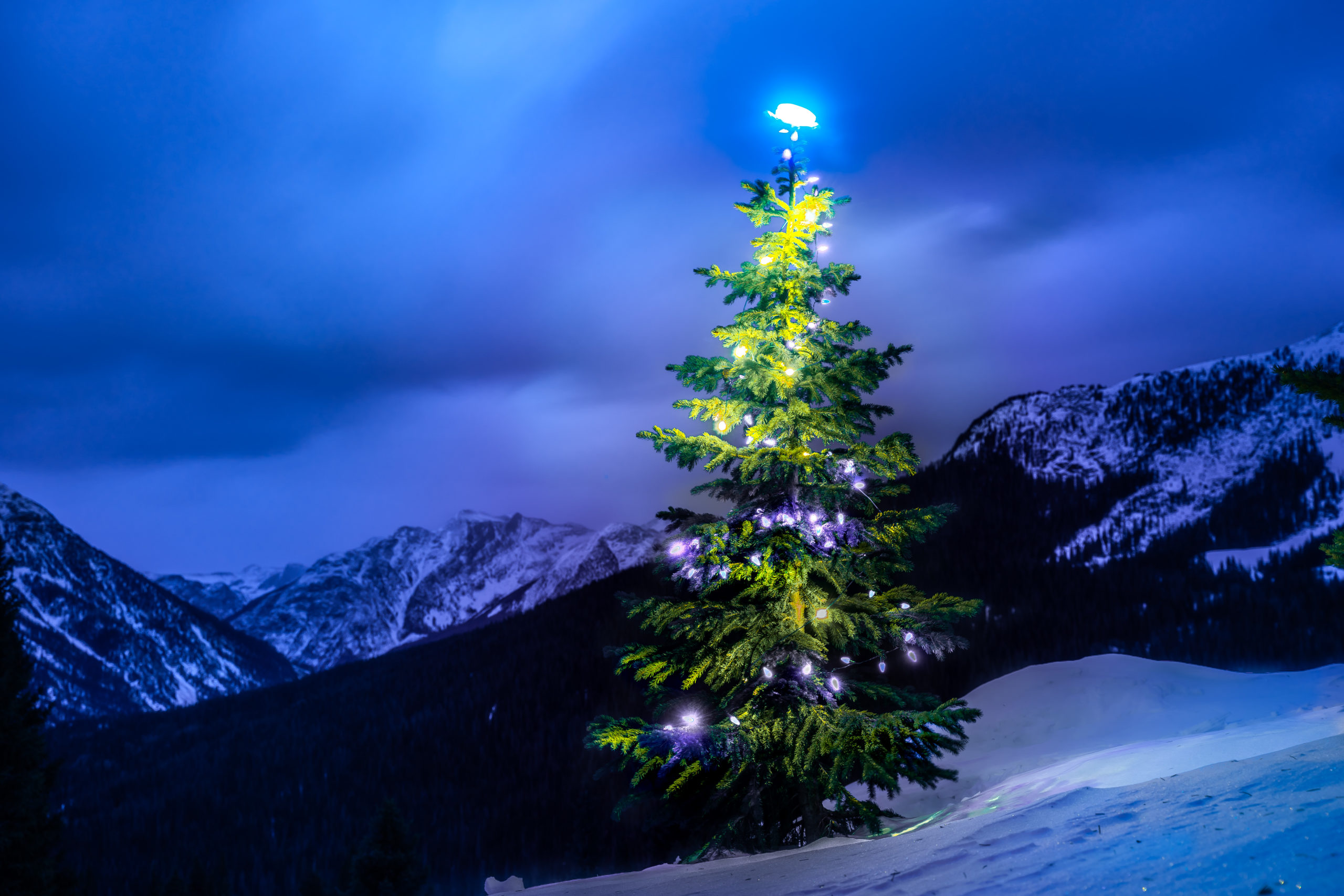 christmas tree 2020 san juan mountains dusk