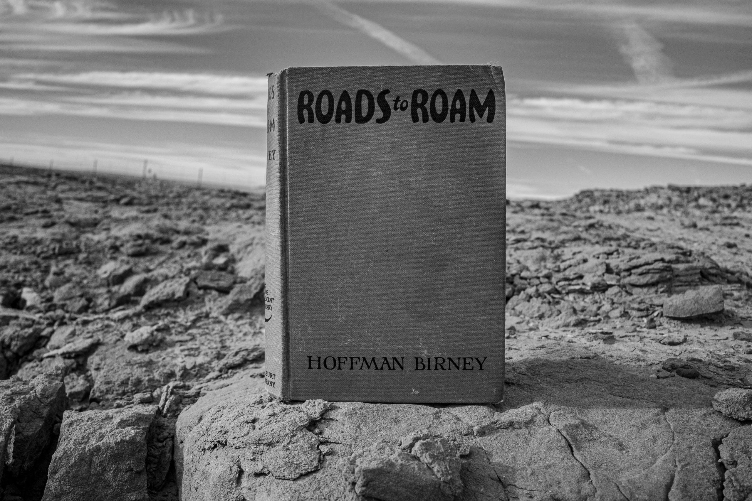 roads to roam hoffman birney novel