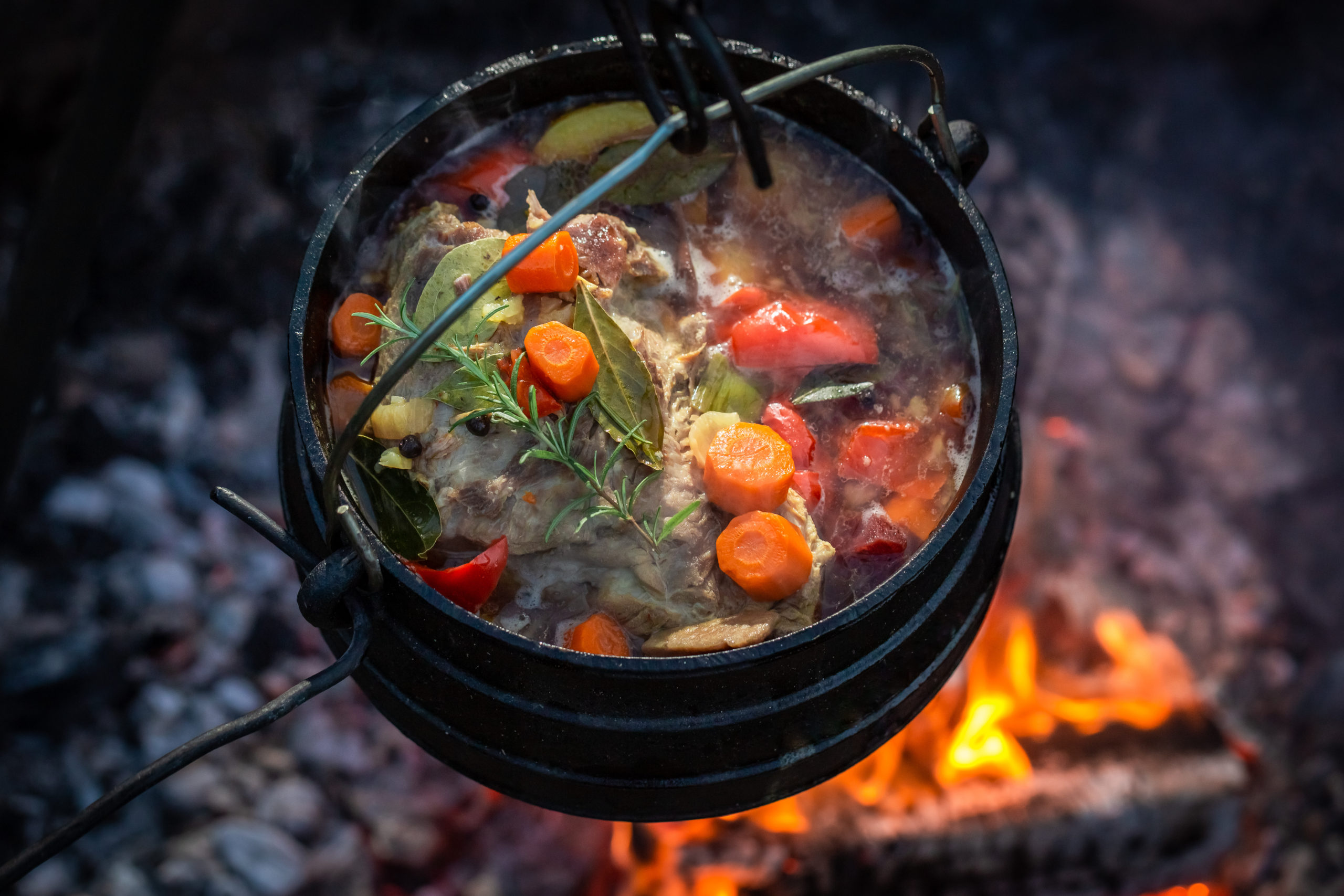 dutch oven recipes stew