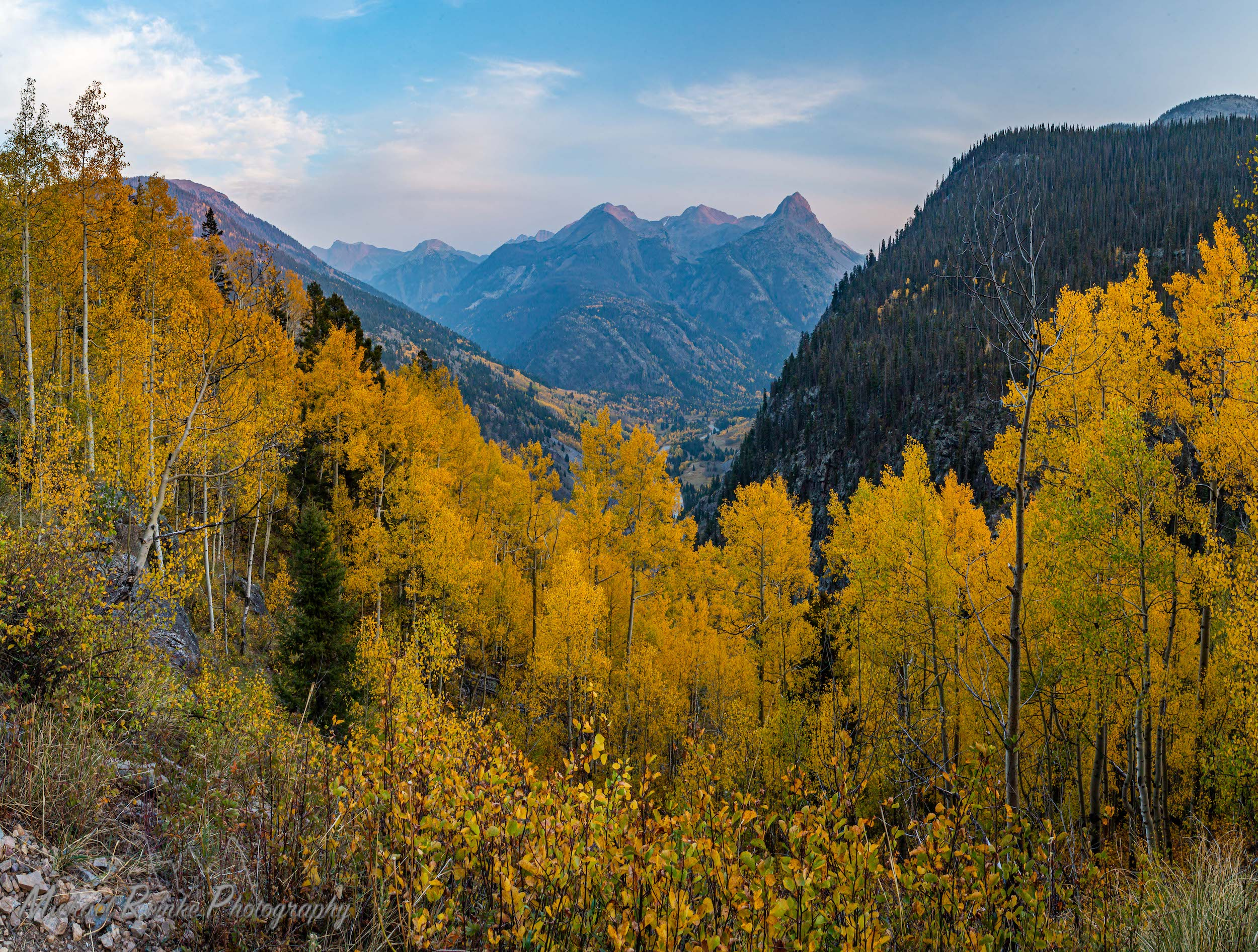fall colors aspens san juan mountains colorado