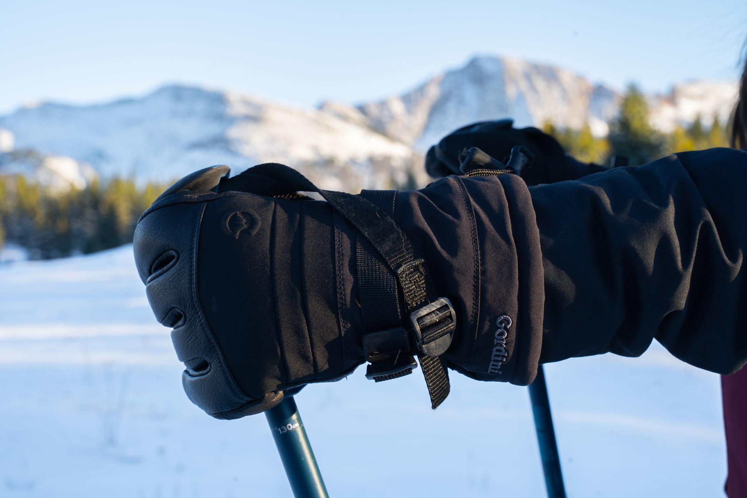 gordini polar glove landscape